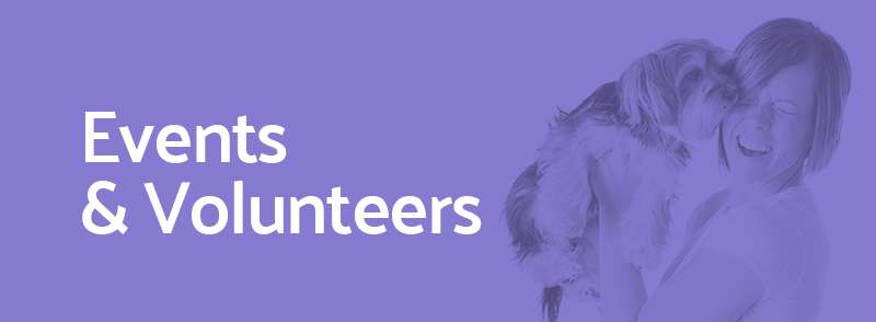 Events and Volunteers StratusLIVE